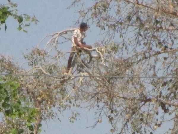 <strong>Read more: मिर्जापुर: पिटाई करने वालों की करो पिटाई, जेल के पीपल पर चढ़ कैदी ने किया हलकान</strong>