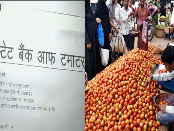 Congress opens 'State Bank of Tomato' in Lucknow to protest against rising prices