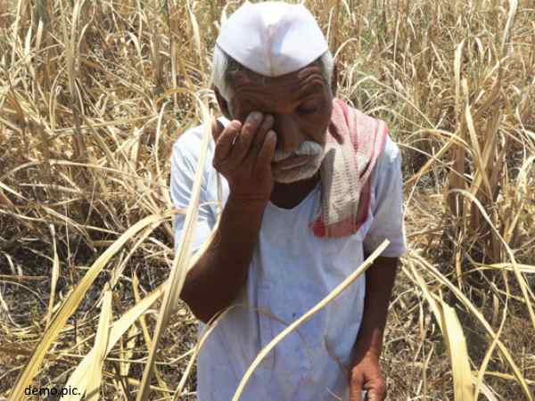 Farmers of Maharashtra fell unconscious, bought medicines for perfusion caused poor condition