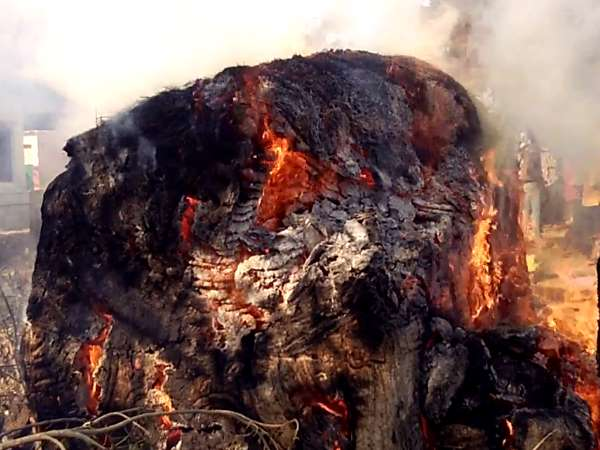 Dabang burn fire in Village for land rogue in Mathura