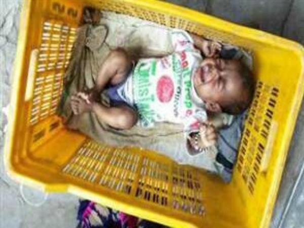 New born found in basket, man rescue from dogs in bihar