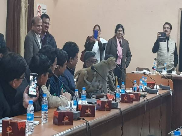Monkey reached UP Collectorate Meeting among Officers in Raebareli