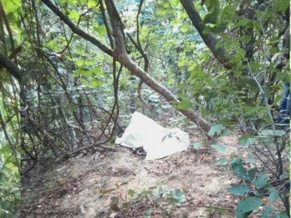 A young girl's dead body found in forest of Kangra, Himachal Pradesh