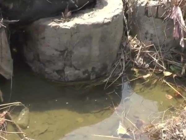 हरियाणा: रोहतक में नहर के अंदर बैग में मिला 7 साल की बच्ची का शव, जांच में जुटी पुलिस