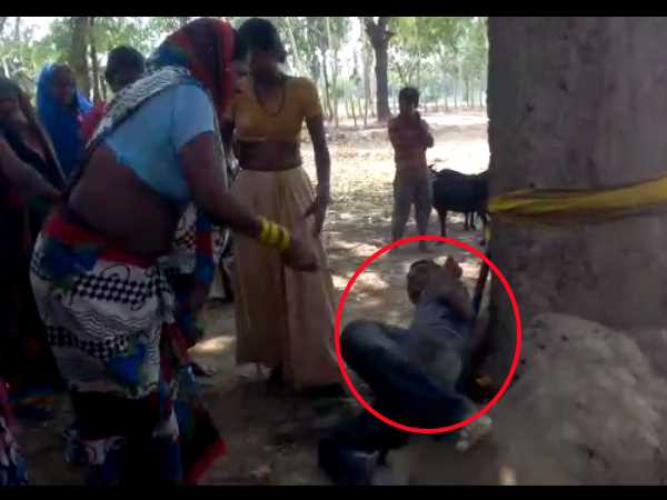 A wife beaten her husband with a tree in Sant Kabir Nagar