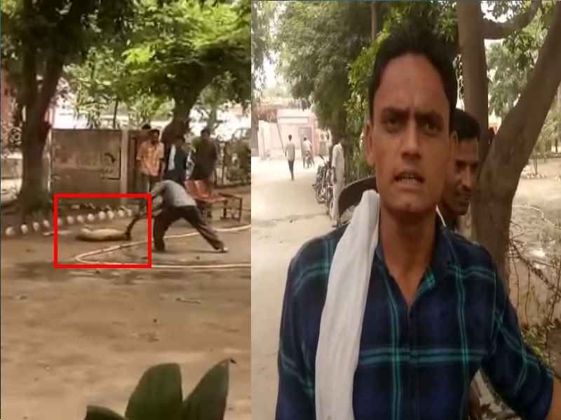 Man Killed Dog Moradabad Very Brutally