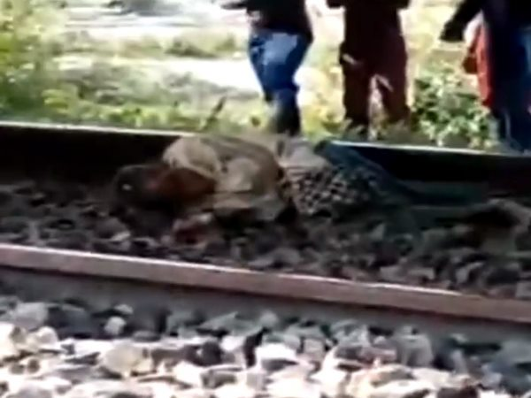 whole train passed over the man, but nothing happend to him, video