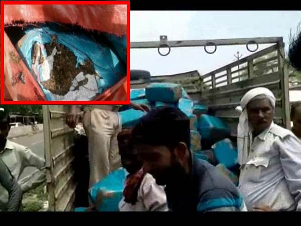 kanpur truck loaded with weed got accident