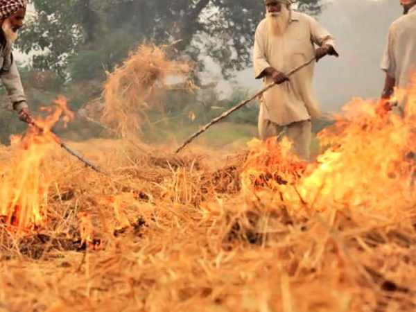 give idea to stop stubble burning then Punjab govt will give you seven crore rupees