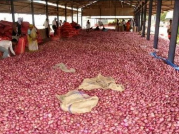 Centre seeks report on plight of onion farmer who sent paltry earnings to PM Modi