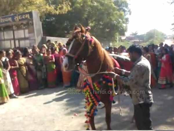 VIRAL VIDEO: Mare uncontrollable at Rajkot Marriage Function during Dance