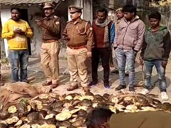 police caught two smugglers with tortoise worth 50 lakh rupees in amethi railway station
