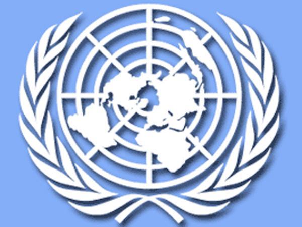 Pulwama Attack: UNSC ने हमले को बताया कायराना, तमाम देशों से भारत की मदद की अपील