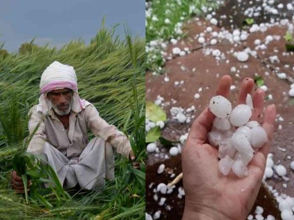 मध्यप्रदेश में ओला-पाला से प्रभावित किसानों को 30 करोड़ रुपए की राहत स्वीकृत