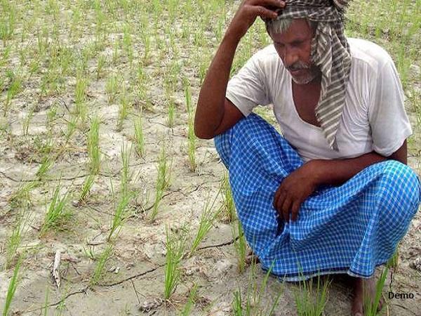 कर्ज तले दबे किसान ने लौटाए PM सम्मान निधि में मिले 2000 रु, सीएम योगी से मांगी इच्छामृत्यु