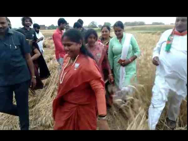 after hema bjp minister sadhvi niranjan harvesting wheat