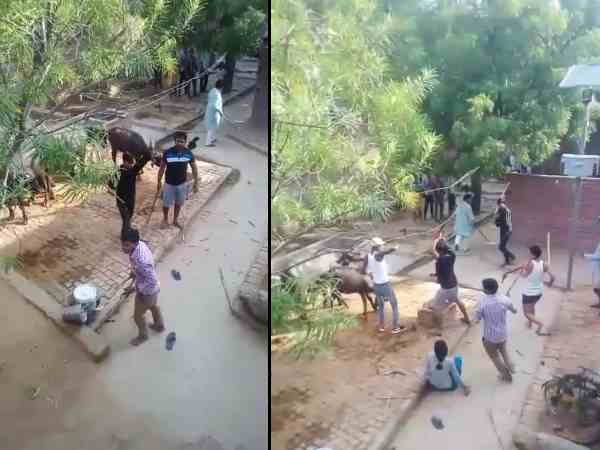 farmer family beaten by the pradhan and his supporters