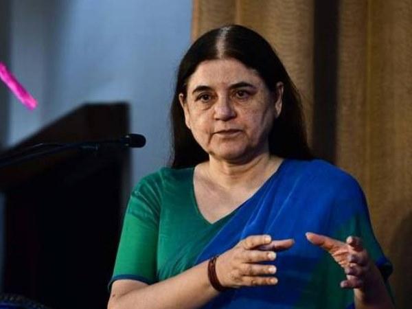सुल्तानपुर से पहली बार सांसद बनकर संसद पहुंचने वाली महिला बनीं मेनका गांधी