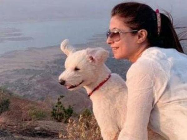 यह पढ़ें:पीएम मोदी के बयान पर अब उर्मिला ने ली चुटकी, कहा-शुक्र है बादल नहीं हैं, डॉगी को मिल रहे रडार के सिग्नल