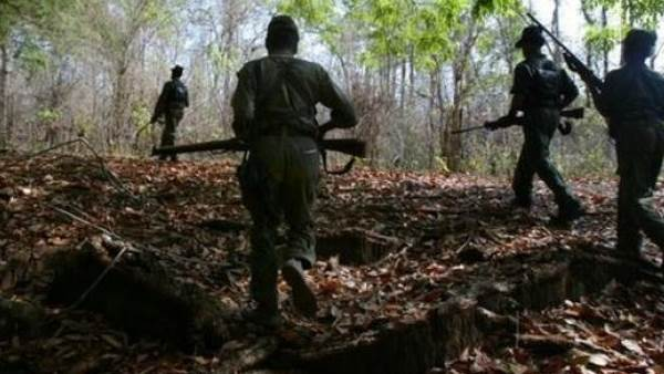 7 naxals killed in an encounter with Special Task Force in Tiriya, Bastar