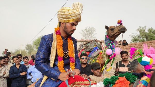 Groom on the camel in Gangiyasar village of Jhunjhunu