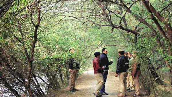 UPSSSC apply for 655 forest guard posts in forest department