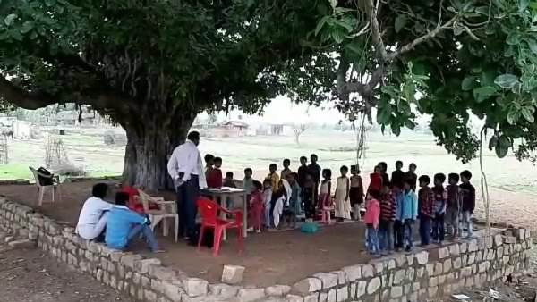 Govt school under the Peepal Tree for 25 years in Tikra Village of Satna MP