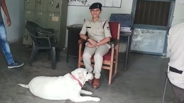 police adopted labrador dog Sultan After 5 murders Case of Sagar