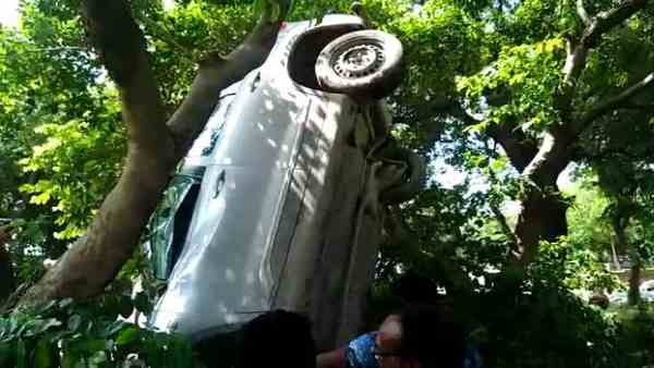 car hit and hang on the tree