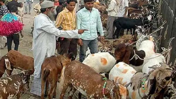 <strong>पढ़ें- आखिर क्यों सोना बेचकर जानवर खरीद रहे हैं पाकिस्तानी</strong>