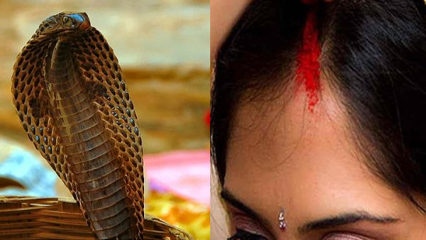 girl claims snake weds her