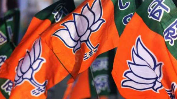 maharashtra BJP expels 4 rebels patry leader ahead of polls