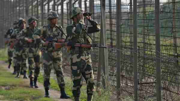 BSF caught two Pakistanis in Abohar sector