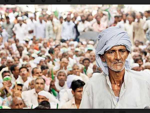 Gujarat: More than 400 farmers reached to High Court for crop insurance