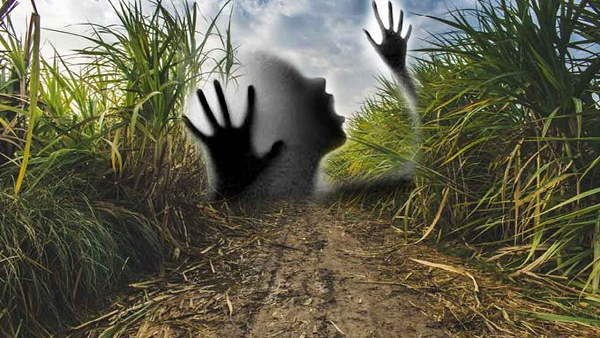 पढ़ें: पिता को खाना देकर घर लौट रही किशोरी को गन्ने के खेत में खींचा, दुष्कर्म करने के बाद वहां से भागा