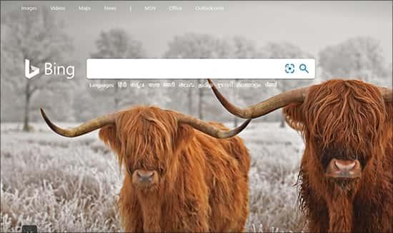 Bing सर्च इंजन गूगल के लिए Microsoft का जवाब है