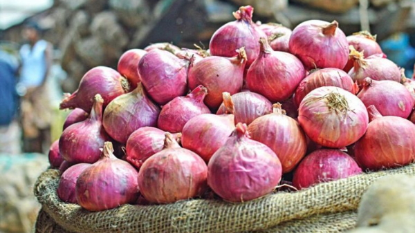 Government bans export of all varieties of onions with immediate effect