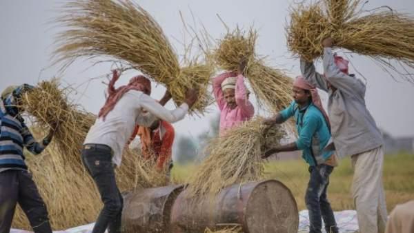 भारत बना दुनिया की पांचवीं सबसे बड़ी अर्थव्यवस्था, ब्रिटेन और फ्रांस को पीछे छोड़ा: रिपोर्ट