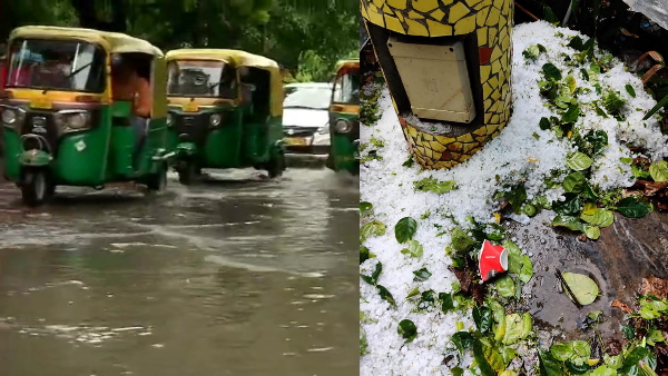 hailstone with heavy rains in Delhi NCR see viral picture of social media