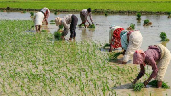 3 करोड़ किसानों के लिए वित्त मंत्री का बड़ा ऐलान, 31 मई तक ब्याज पर मिली छूट