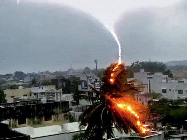 VIDEO: समुद्र के निकट शहर में आसमान से गिरी बिजली ने खाक कर डाला पेड़, कैमरे में कैद हुआ दृश्य