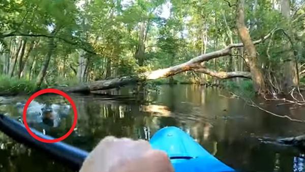 नाव पर बैठे शख्स पर मगरमच्छ ने किया हमला, कैमरे में कैद हुआ डरा देने वाला VIDEO