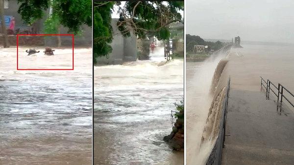 गुजरात में बारिश का कहर: कहीं बच्चे डूबे तो कहीं पशु, उफने नदी-नाले, कई जिलों में रिकॉर्ड 10 इंच वर्षा
