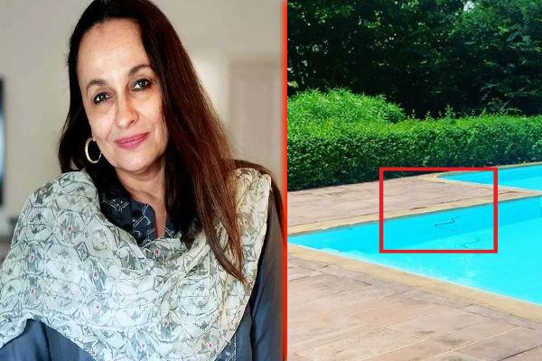 इसे भी पढ़ें- आलिया भट्ट की मां सोनी राजदान के स्वीमिंग पूल में घुसा सांप, शेयर किया VIDEO