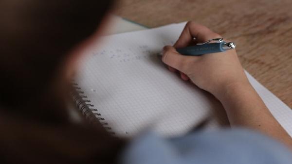CA November Exams 2020: आईसीएआई ने बिहार में स्थगित की सीए परीक्षा, यहां जानिए नई तारीखें