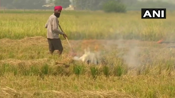 Farmers continue to burn stubble in their fields Amritsar Punjab