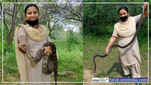 ये हैं राजस्थान की स्नेक लेडी अंजू चौहान, जहरीले सांप भी खाते हैं इनसे खौफ, एक बार बन आई थी जान पर
