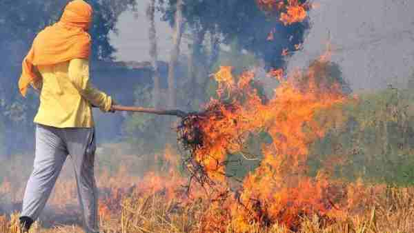 Supreme Court appoints Justice retd Madan B Lokur to act as one man monitoring committee to prevent stubble burning