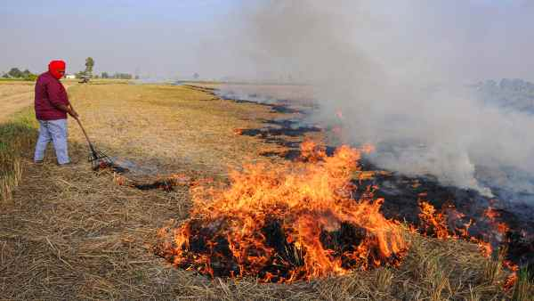 SC suspended its order to set up a single member committee to monitor stubble burning