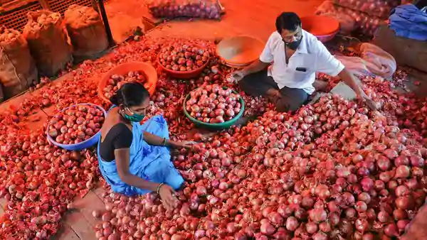 Centre govt relaxes import norms for onion to boost domestic supply till December 15